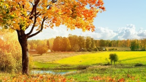 Autumn Landscape Wallpapers 1366x768