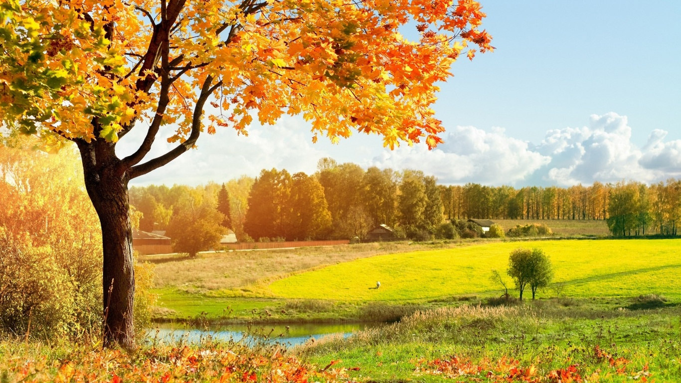 Autumn Landscape Wallpapers 1366×768