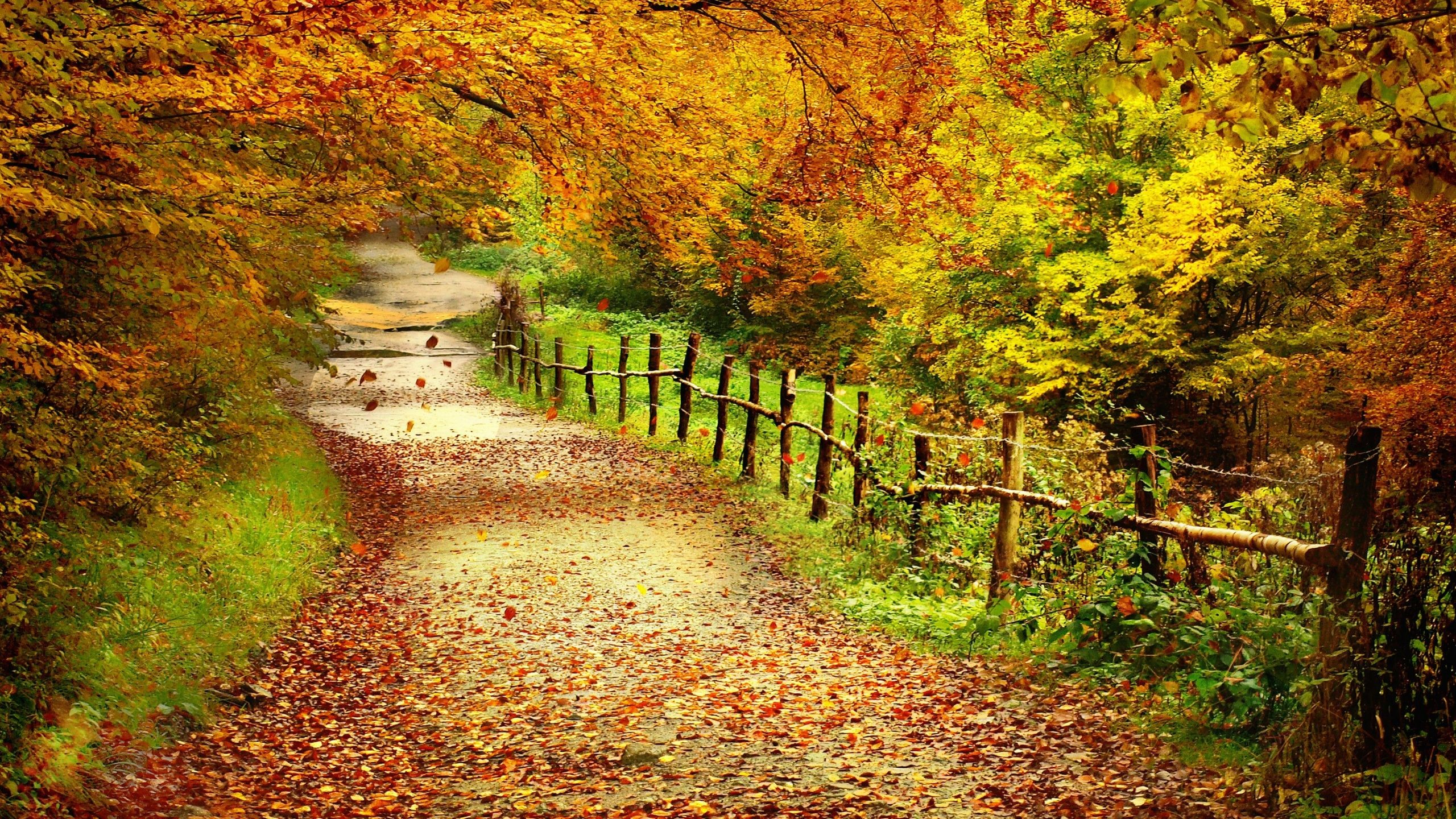 Autumn Love Wallpaper Landscape Backgrounds
