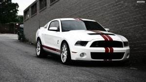 Ford Cars Shelby Wallpaper HD