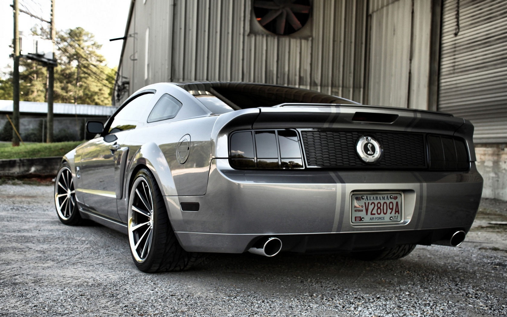 Shelby Wallpaper HD Backgrounds