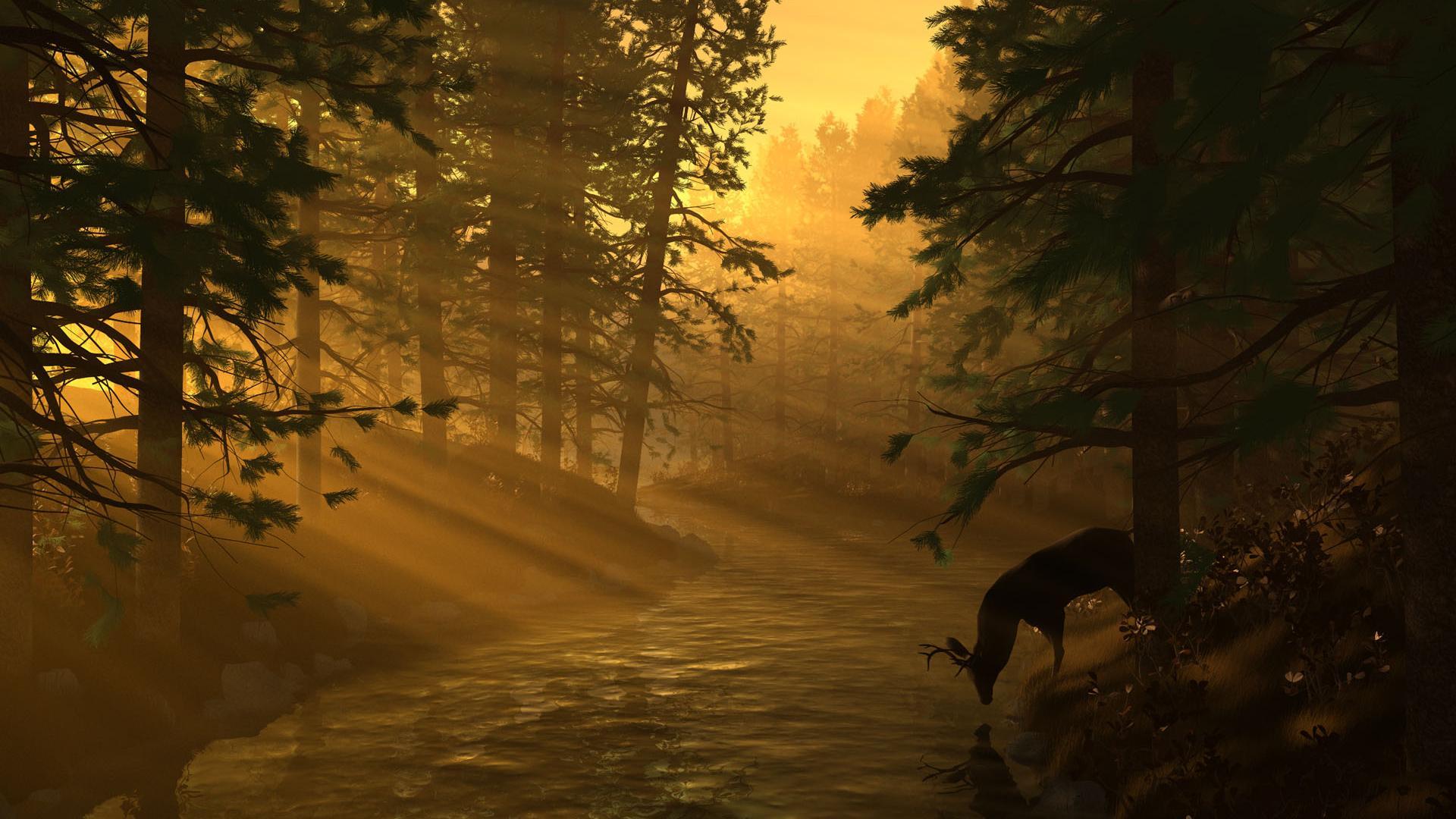 Sunset Nature Wallpaper Backgrounds
