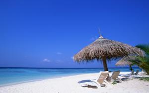 Beach Sea Wallpaper Free Download Background