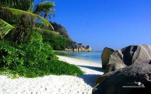 Beach Stones Background HD