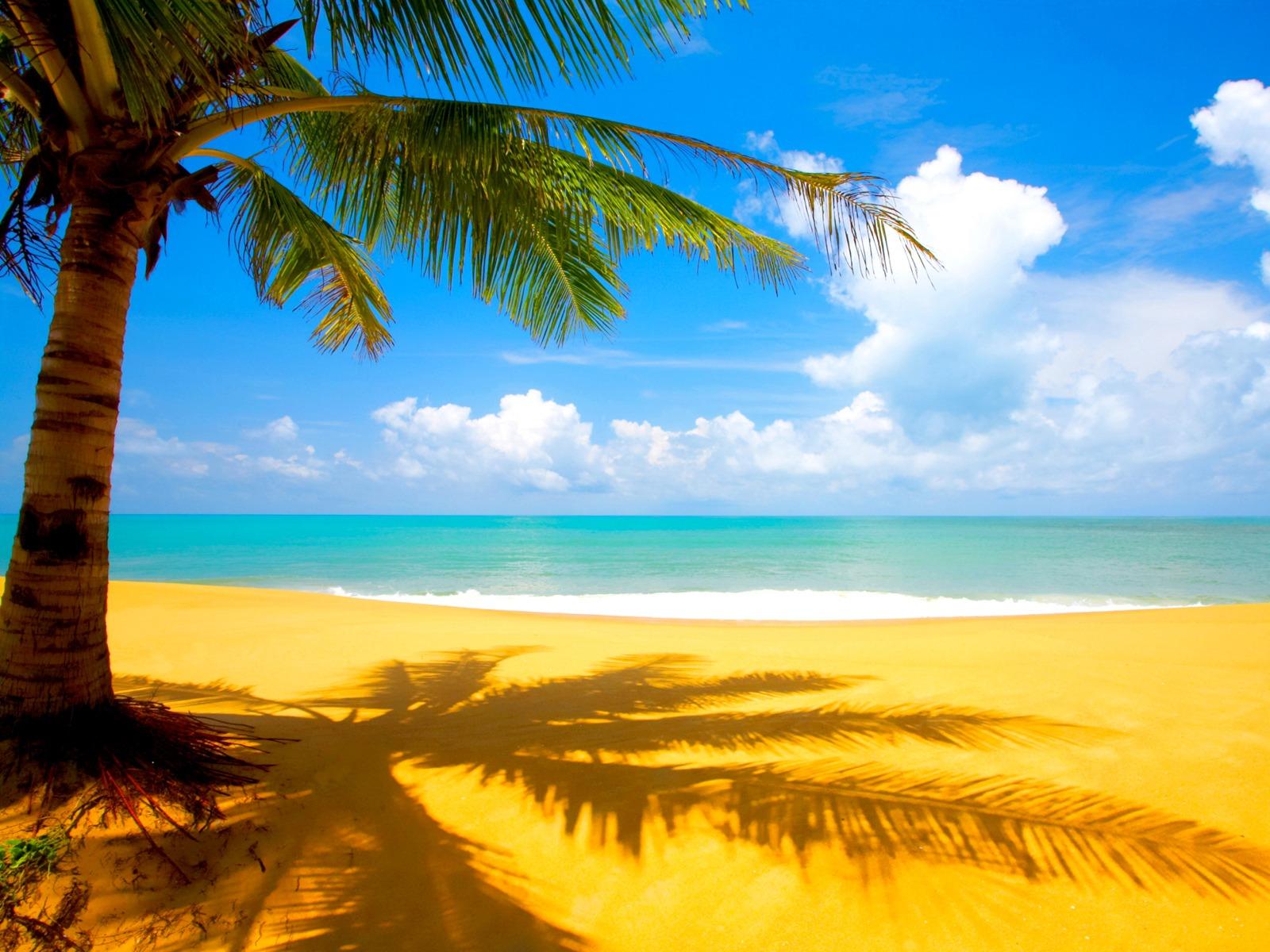 Beach Wallpaper Amazing Landscape