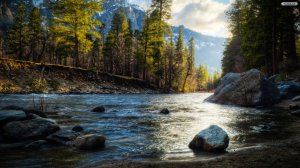 Beautiful River Wallpaper Free Download