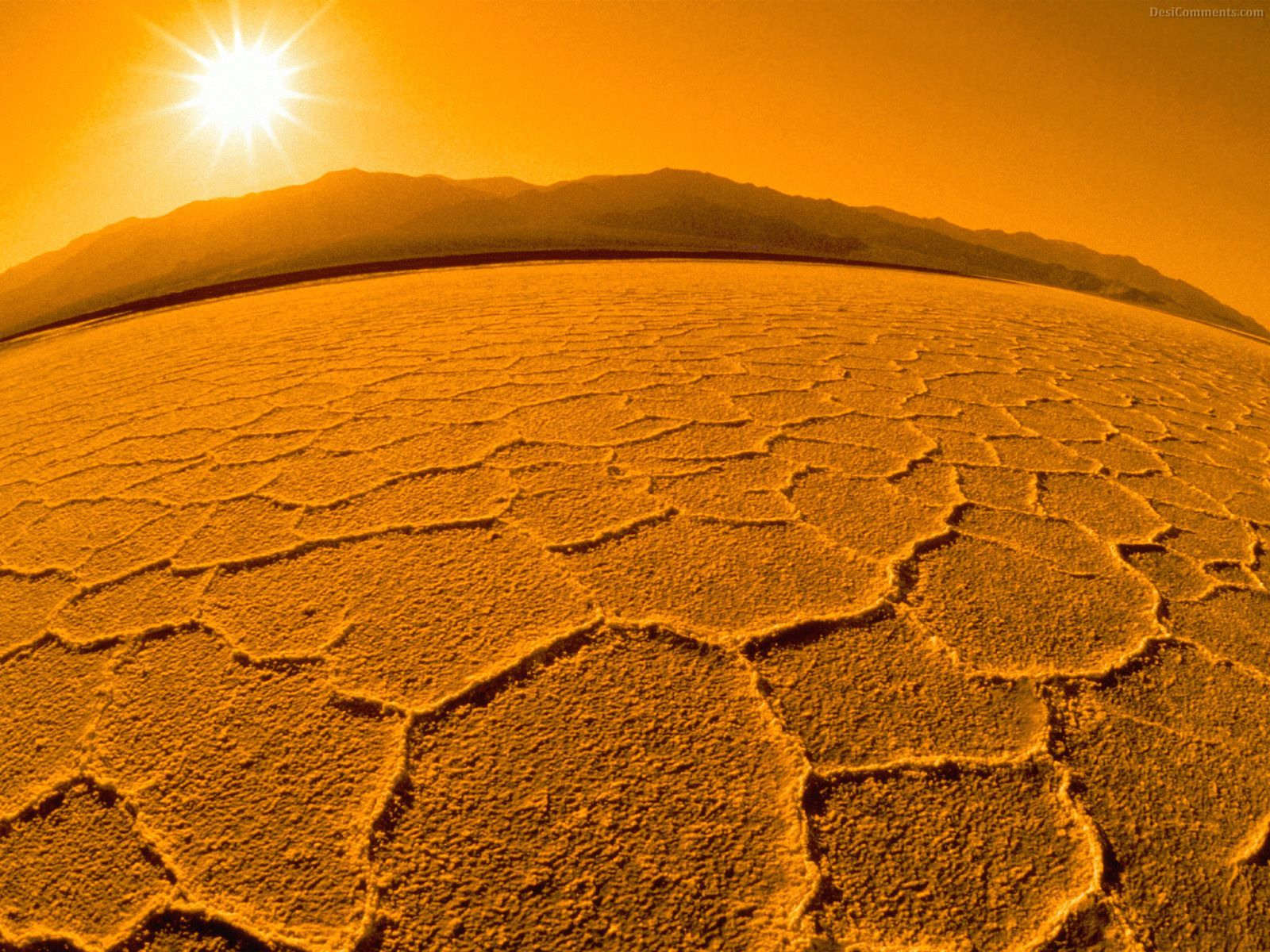 Desert Wallpaper Top New