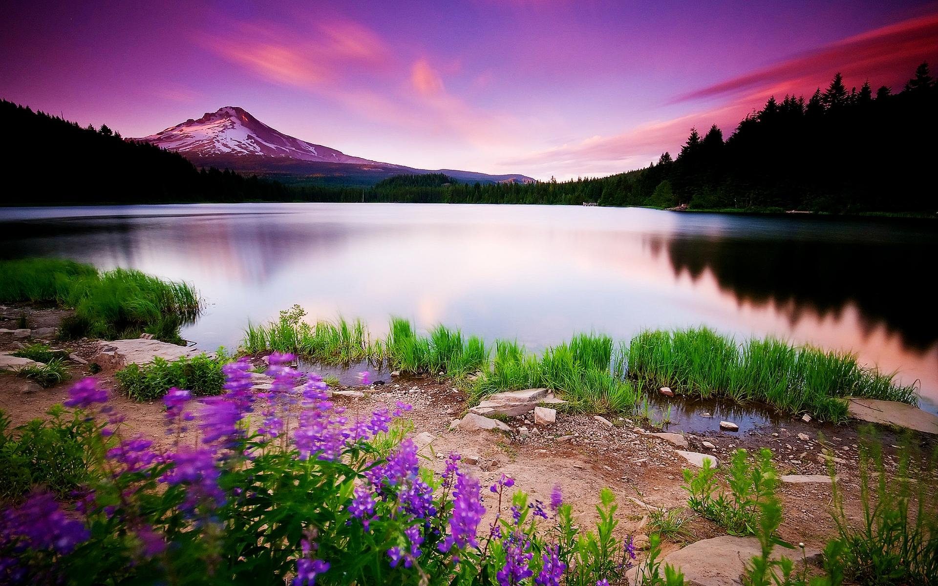 Lake Wallpaper Image Picture