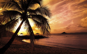 Nature Summer Sunset Beach Wallpaper