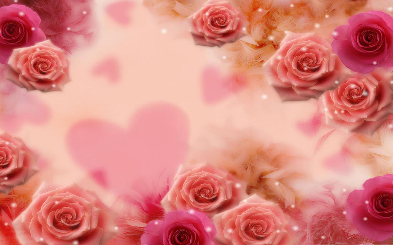 Rose Love Wallpaper Backgrounds