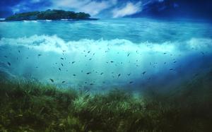 Sea World Beautiful HD Wallpaper