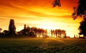 Sunrise Wallpaper Landscape