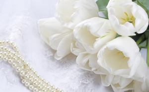 Flowers Wallpaper White Desktop