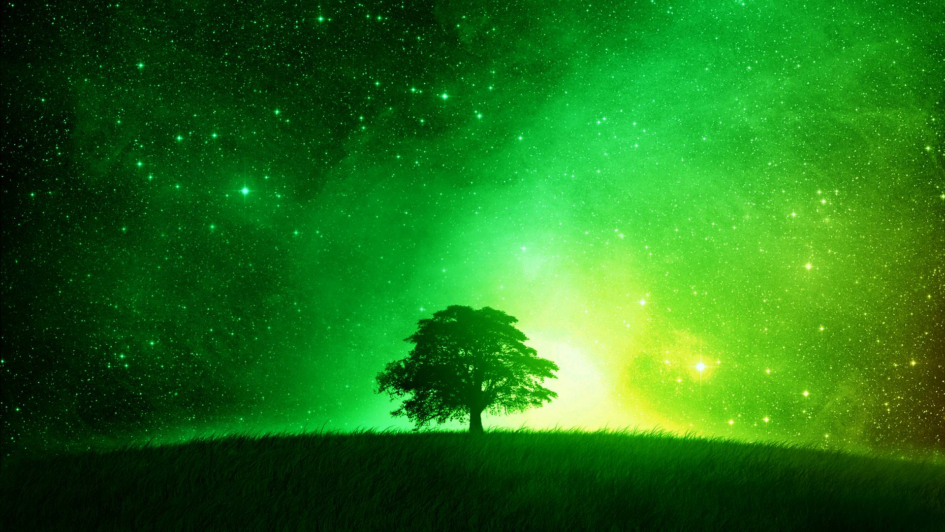Green Wallpaper 1920×1080 HD