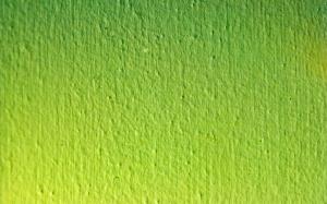 Green Wallpaper Desktop Windows