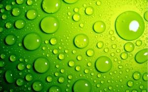 Green Wallpaper Photos Paper
