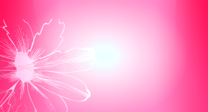Pink Background Screensaver HD