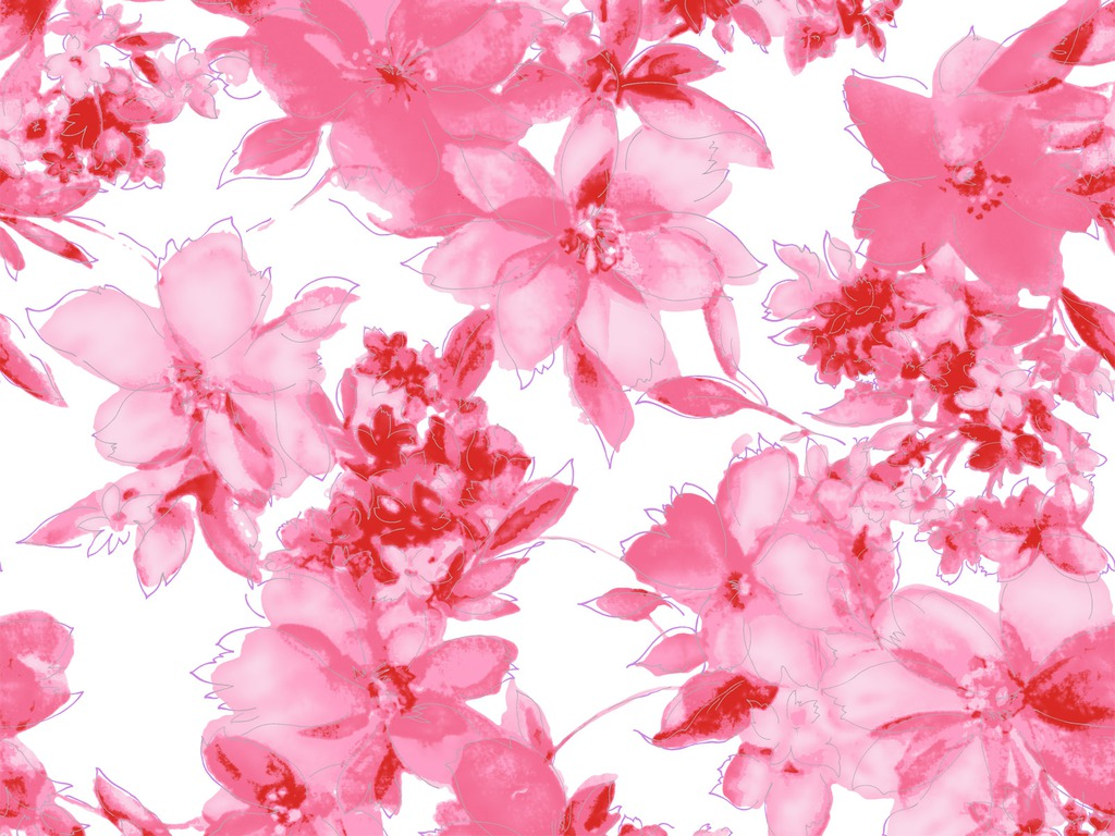 Pink Flowers Wallpaper Laptop HD #4743 Wallpaper | WallDiskPaper