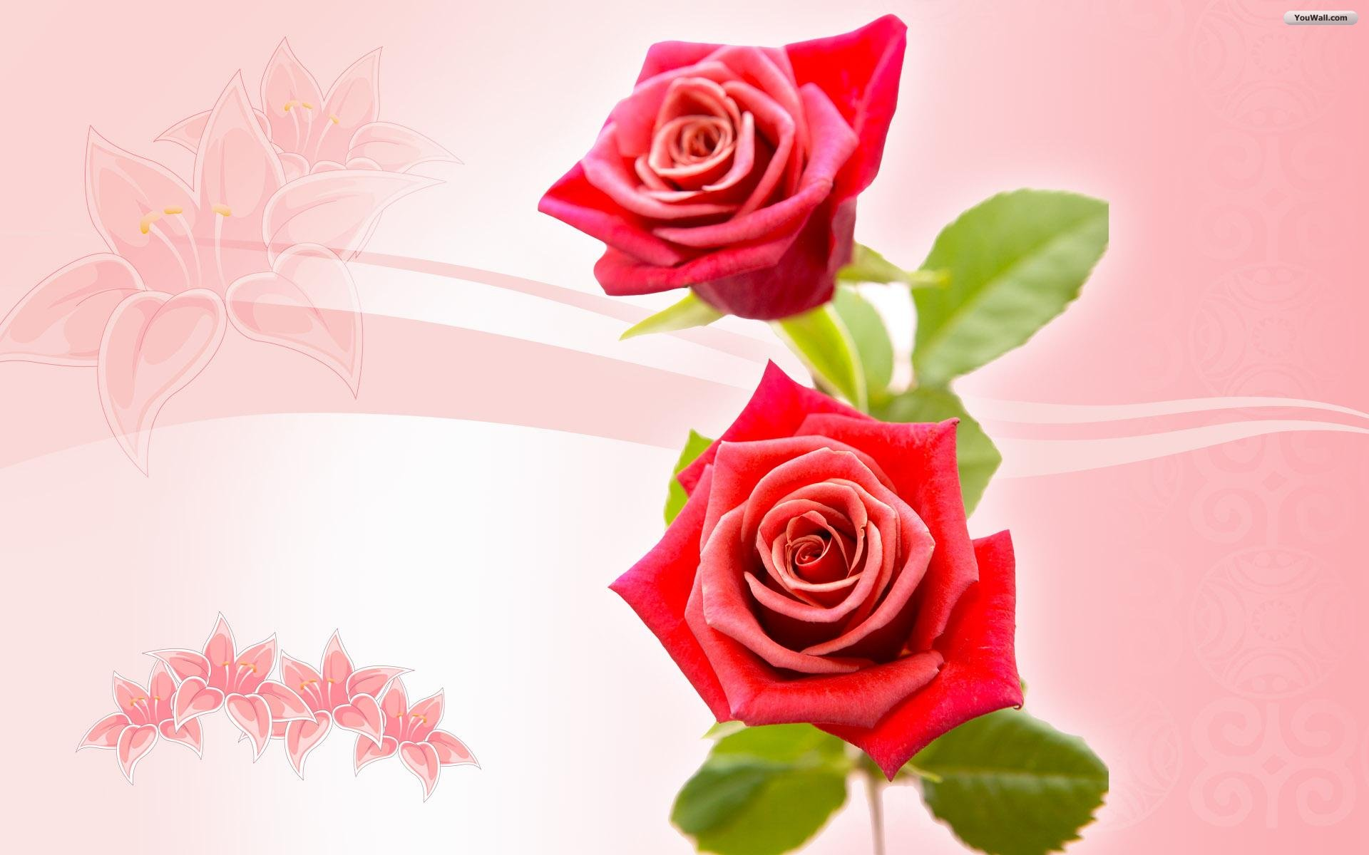 Roses Wallpaper Background HD