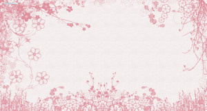 White Pink Flowers Wallpaper