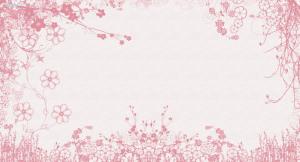 White Pink Flowers Wallpaper