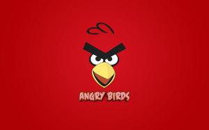 Angry Bird Love Cute Wallpaper