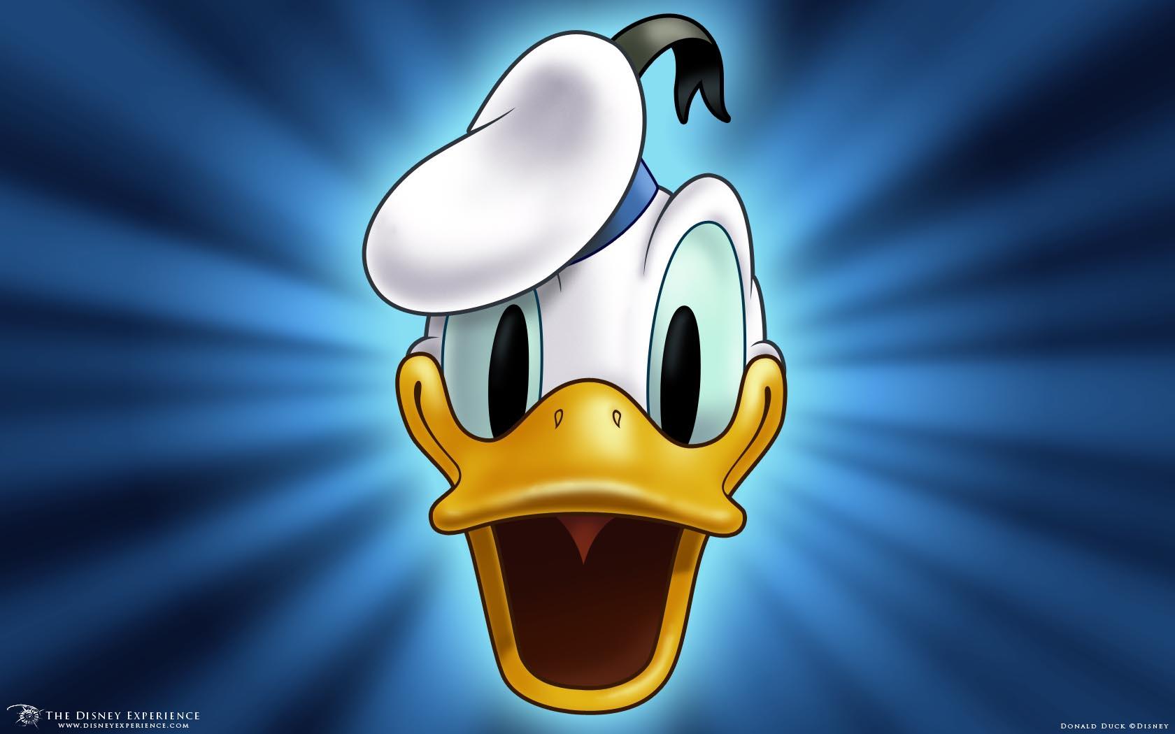 Donald Duck Wallpaper Face HD