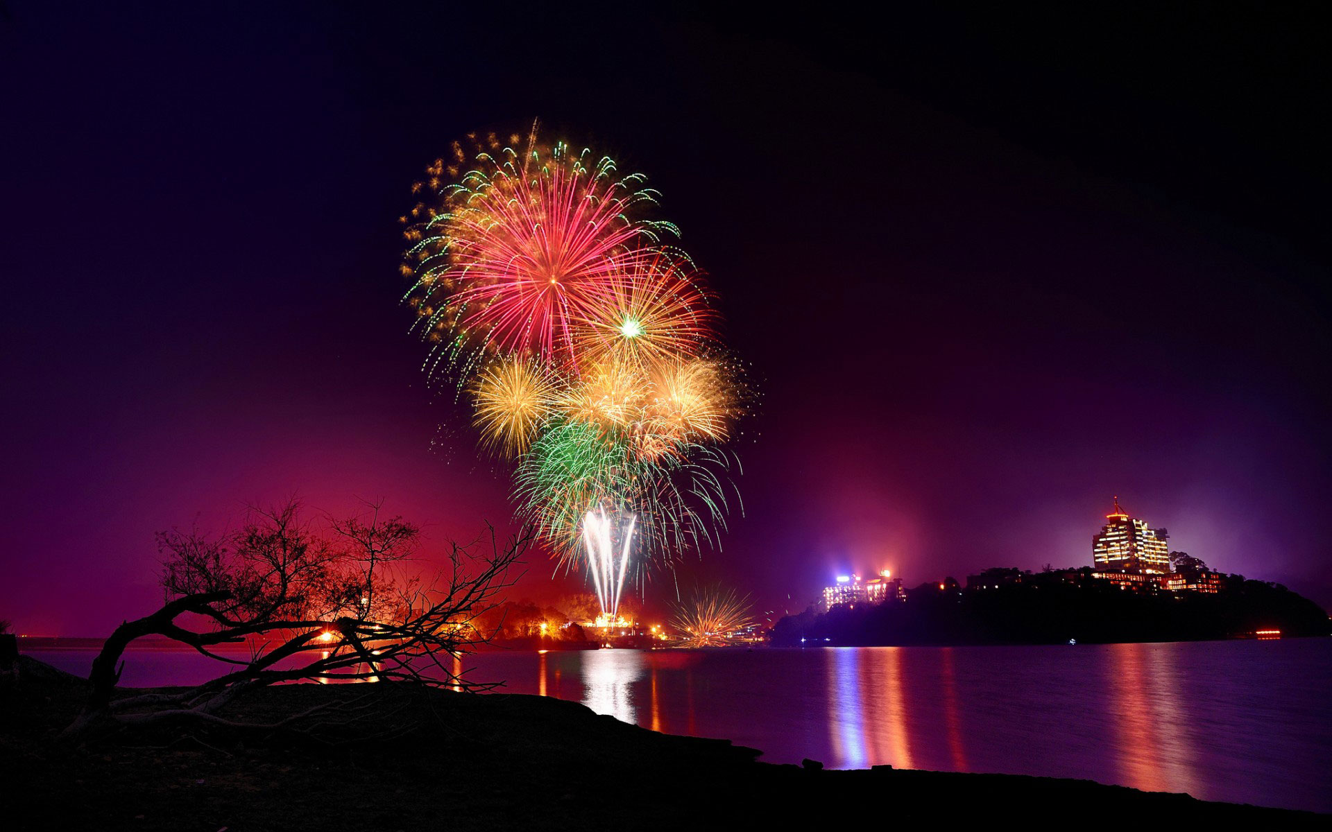 Flowers City Wallpaper Firework New Year