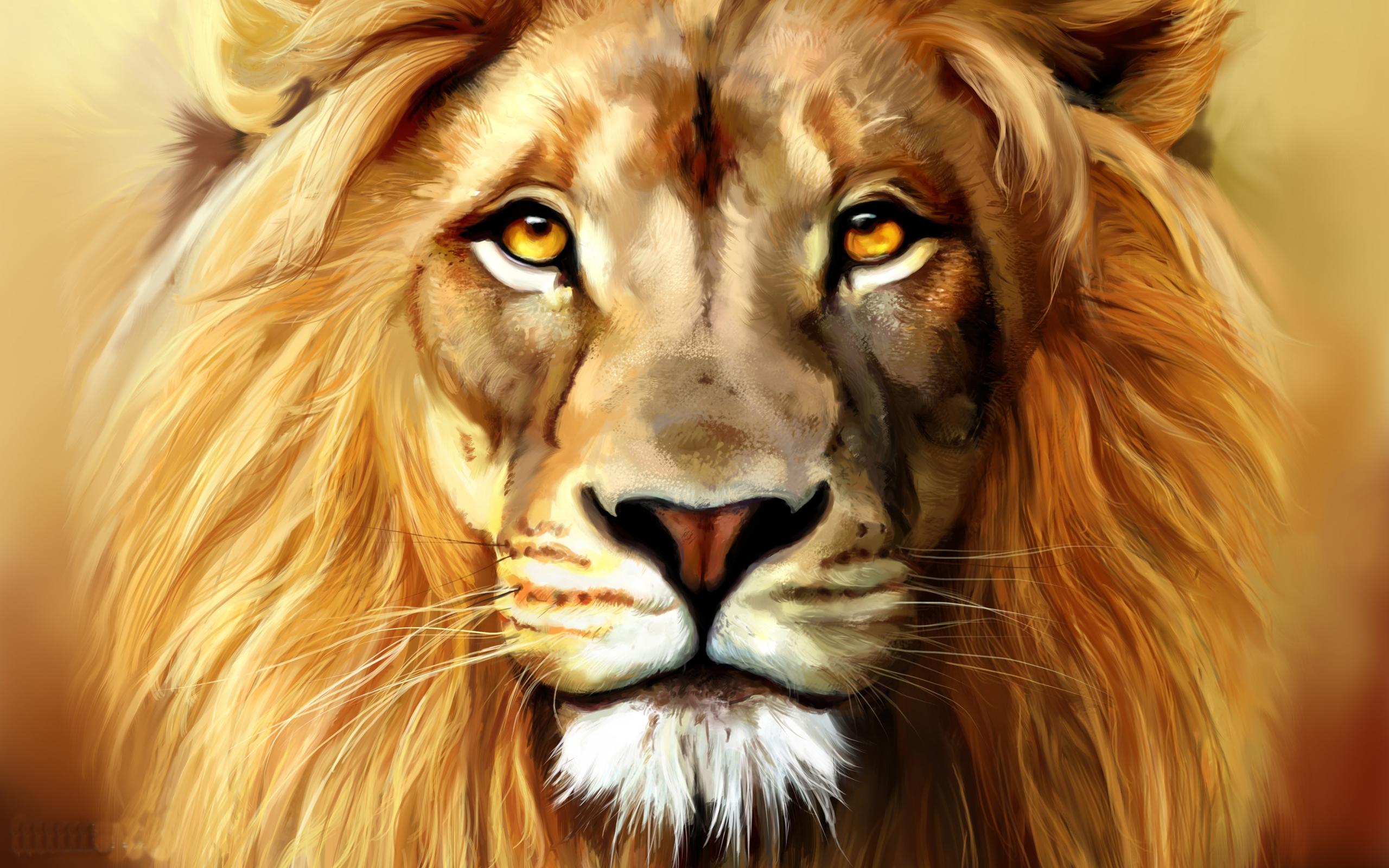 Lion Photography Wallpapers
