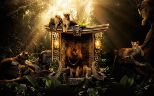 Lion Wallpaper High Definition