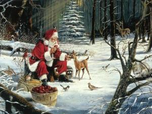 Santa Claus Wallpapers Animals