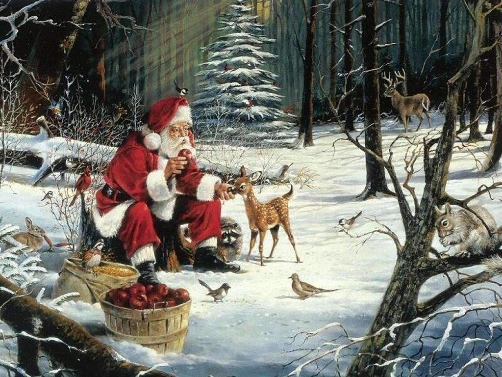 Santa Claus Wallpapers Animals