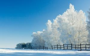 Snow Beautiful landscape Wallpaper