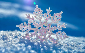 Snowflake Wallpaper Image Picture