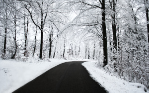 Winter Snow Wallpaper Amazing Pics