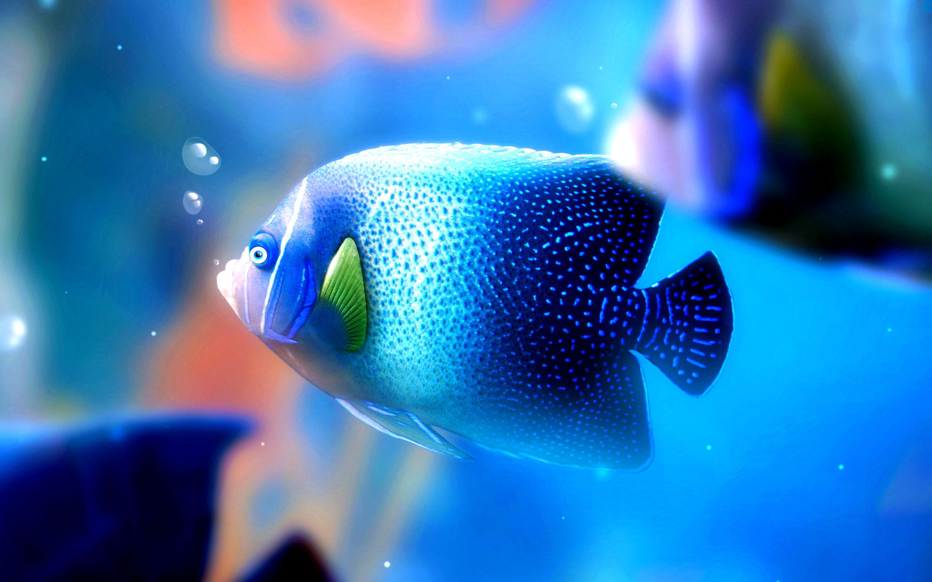 Blue Fish Wallpaper Free Download