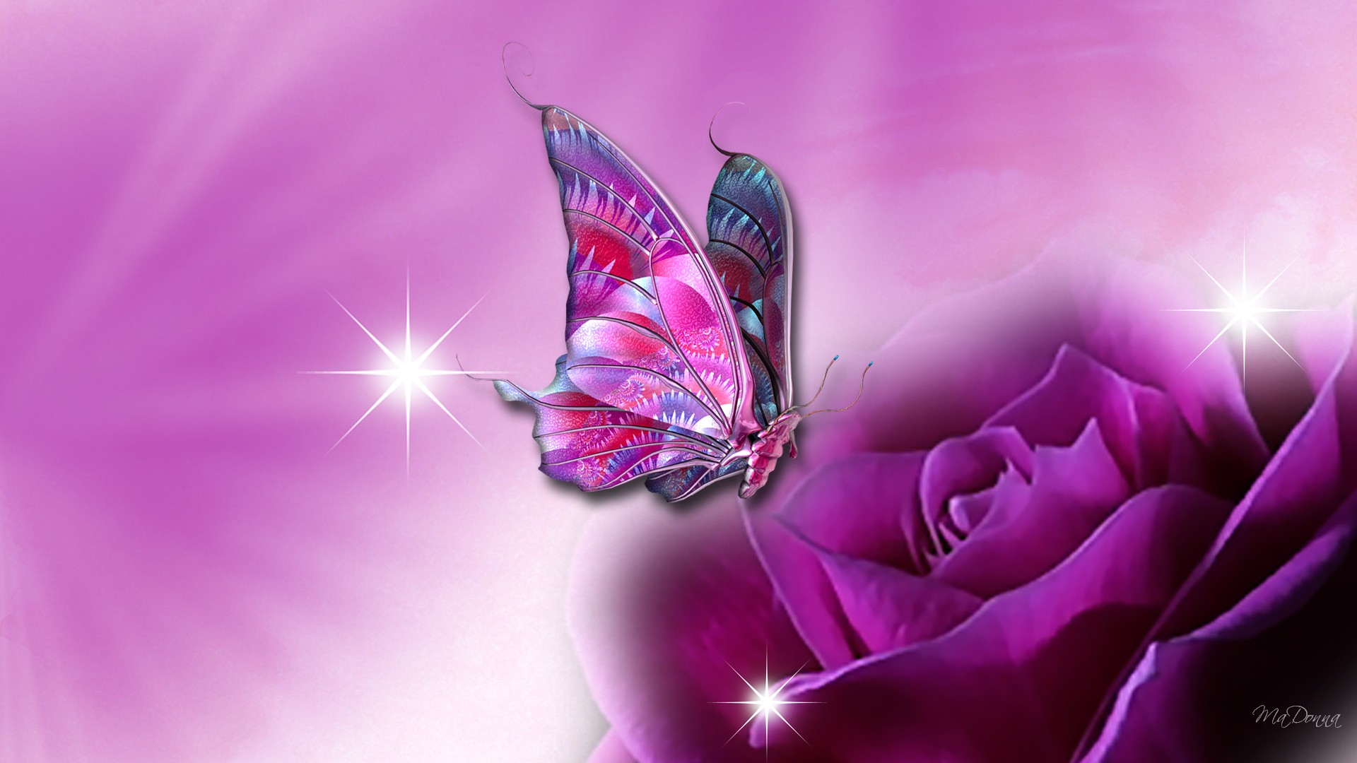 Butterfly Wallpaper Desktop