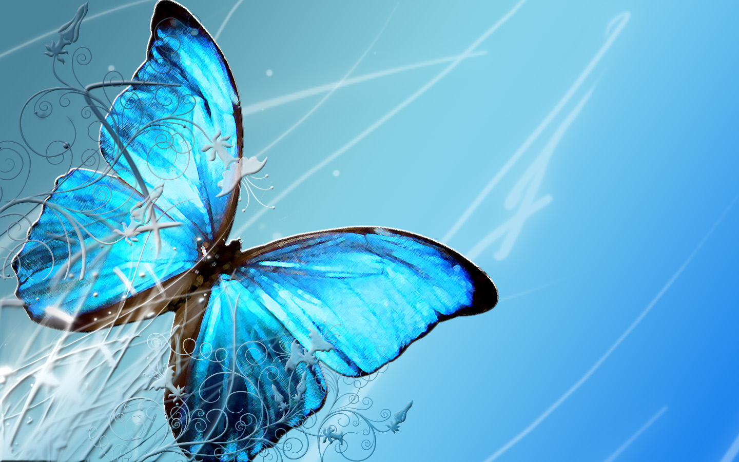 Butterfly Wallpaper High Quality HD