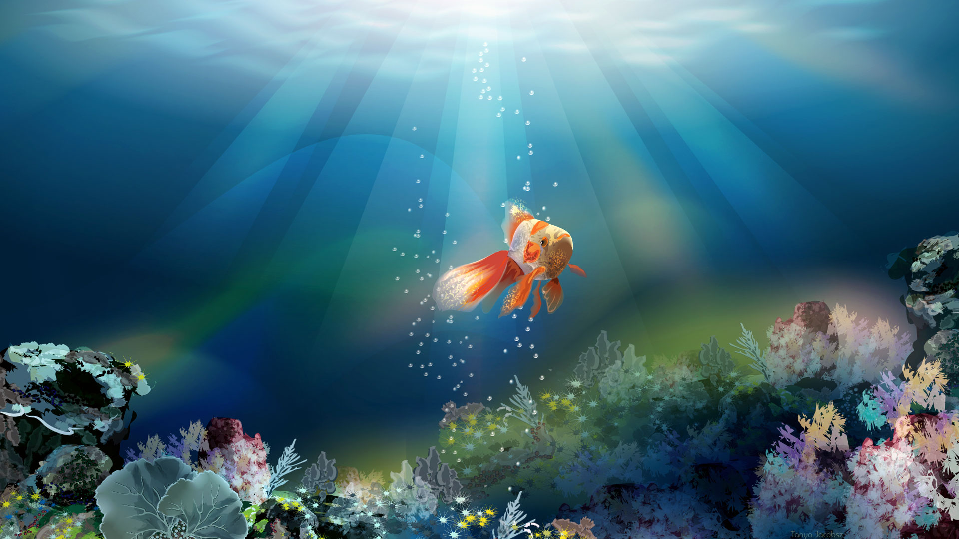 Fish wallpaper 3d desktop 10711 wallpaper walldiskpaper for 3d fish wallpaper