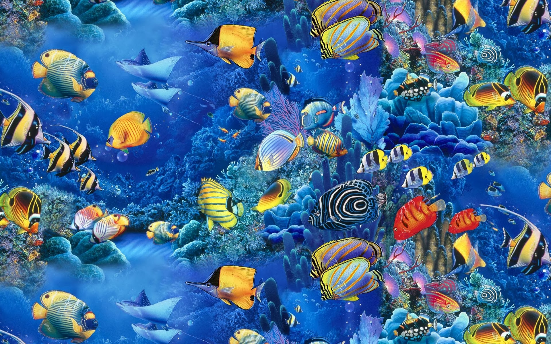 blue fish wallpaper backgrounds - photo #44