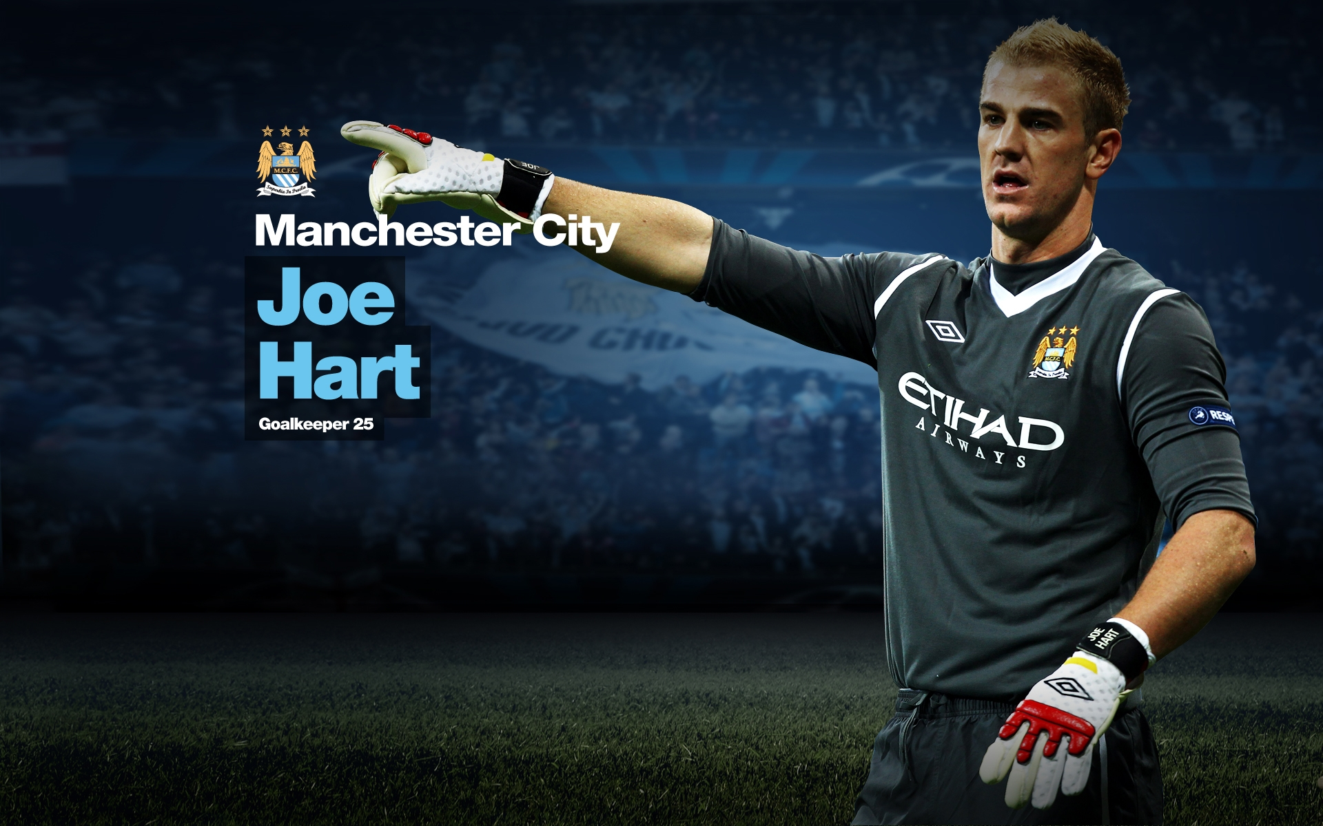 Joe Hart Manchester City Wallpaper 2015