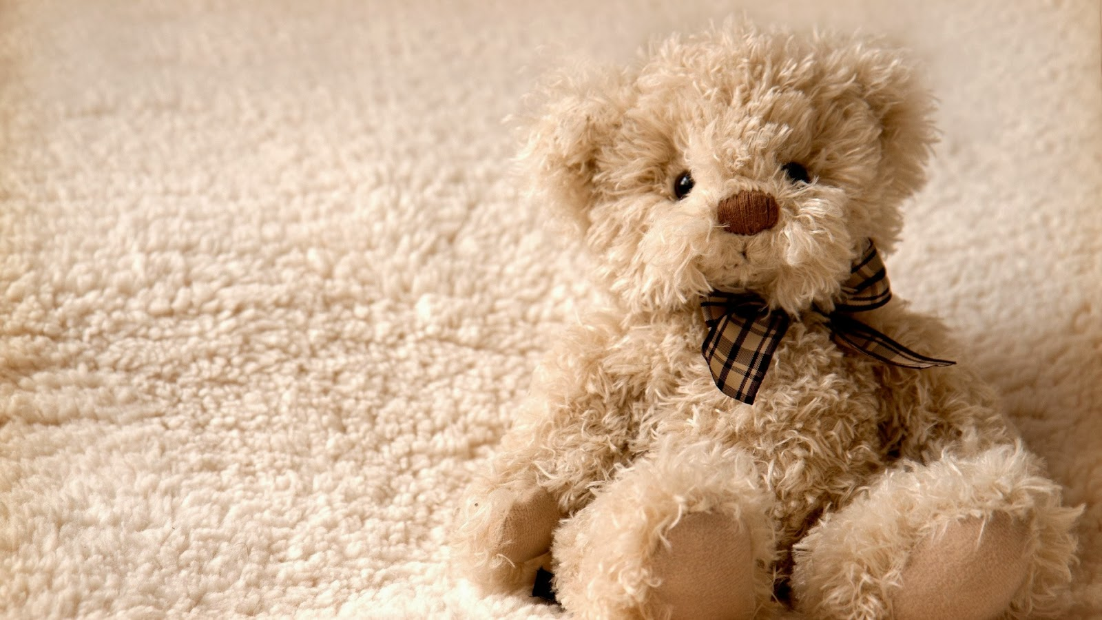 Teddy Bear Wallpaper PC Computer