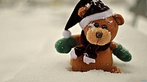 Teddy Bear Wallpaper Widescreen