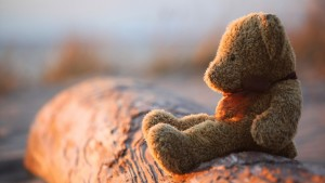 Teddy Bear Wallpaper Windows Themes