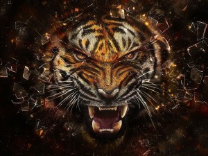 Tiger Wallpaper Android Phones