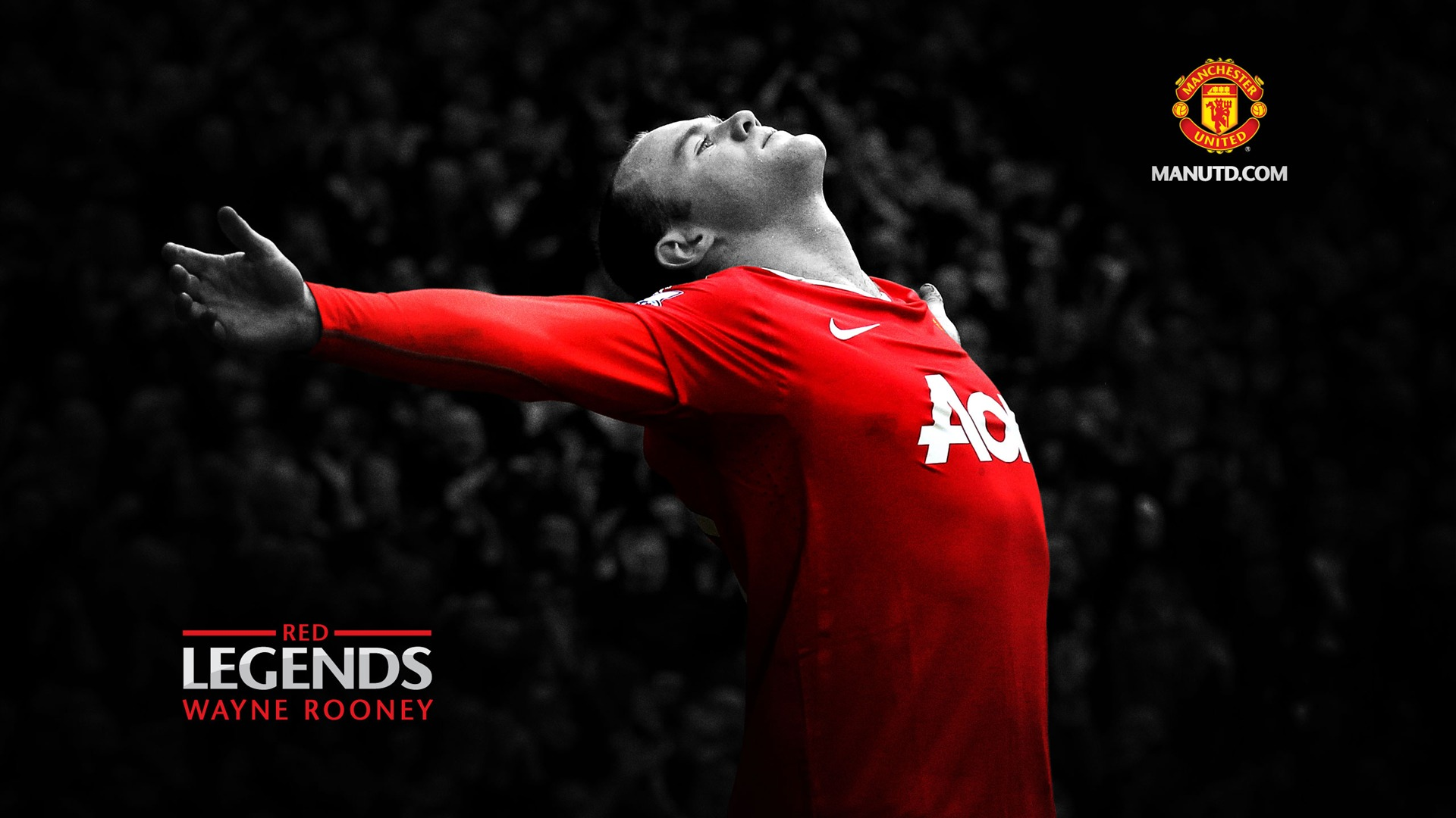 Wayne Rooney Manchester Wallpaper Free