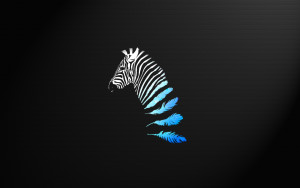 Zebra Wallpaper Awesome Animals