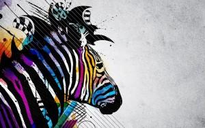 Zebra Wallpaper Image Picture