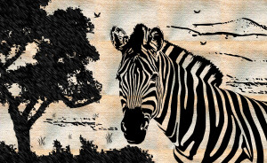 Zebra Wallpaper Windows Download