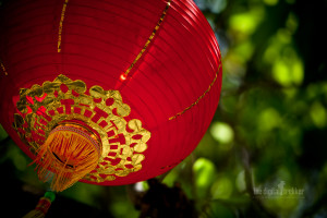 Gong Xi Fa Cai Wallpaper Free Downloads